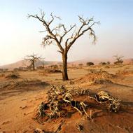 Mission en Namibie