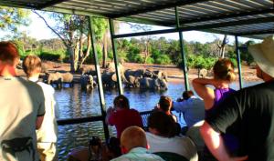 Safari de 20 jours du cap aux chutes victoria