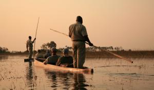 Delta d'Okavango