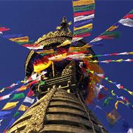 Népal Globalong