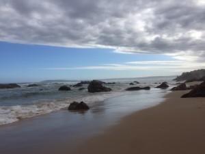 globalong plage en afrique du sud