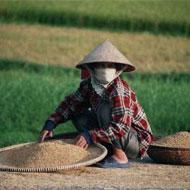 Mission de bénévolat au Vietnam avec Globalong