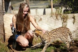 Projet eco-volontaire avec des animaux Globalong