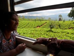 Partez à la découverte du Sri Lanka avec Globalong