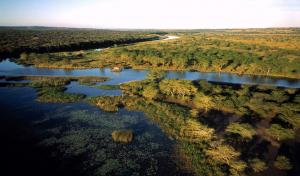 Globalong soutient la journée de l'environnement
