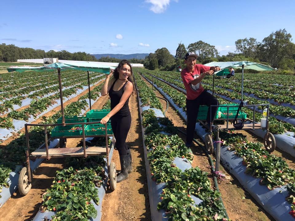 agriculteur sites de rencontre Australiesite de rencontre à Newcastle KZN