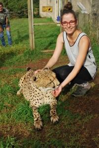 Bénévolat animalier avec les animaux sauvages - GlobAlong