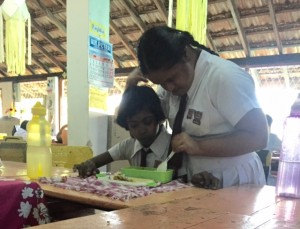 Programme de bénévolat humanitaire et animalier au Sri Lanka - GlobAlong