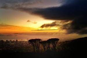 Bénévolat international avec GlobAlong en Afrique du Sud