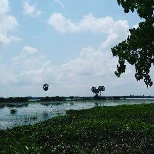 paysages asiatiques - GlobAlong