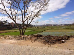 paysages à madagascar - globalong